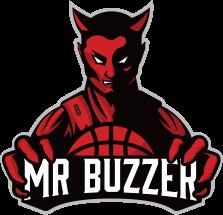 logo MrBuzzer